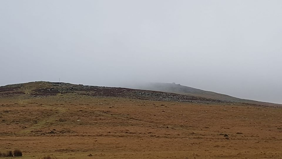Lost Walker & Dogs near Dinger Tor